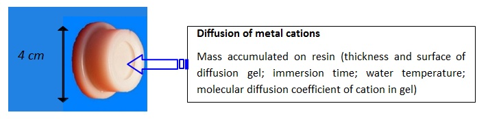 Diffusion of metal cations