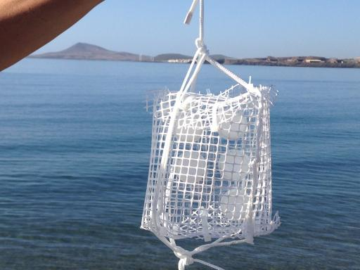 DGT holder and netting