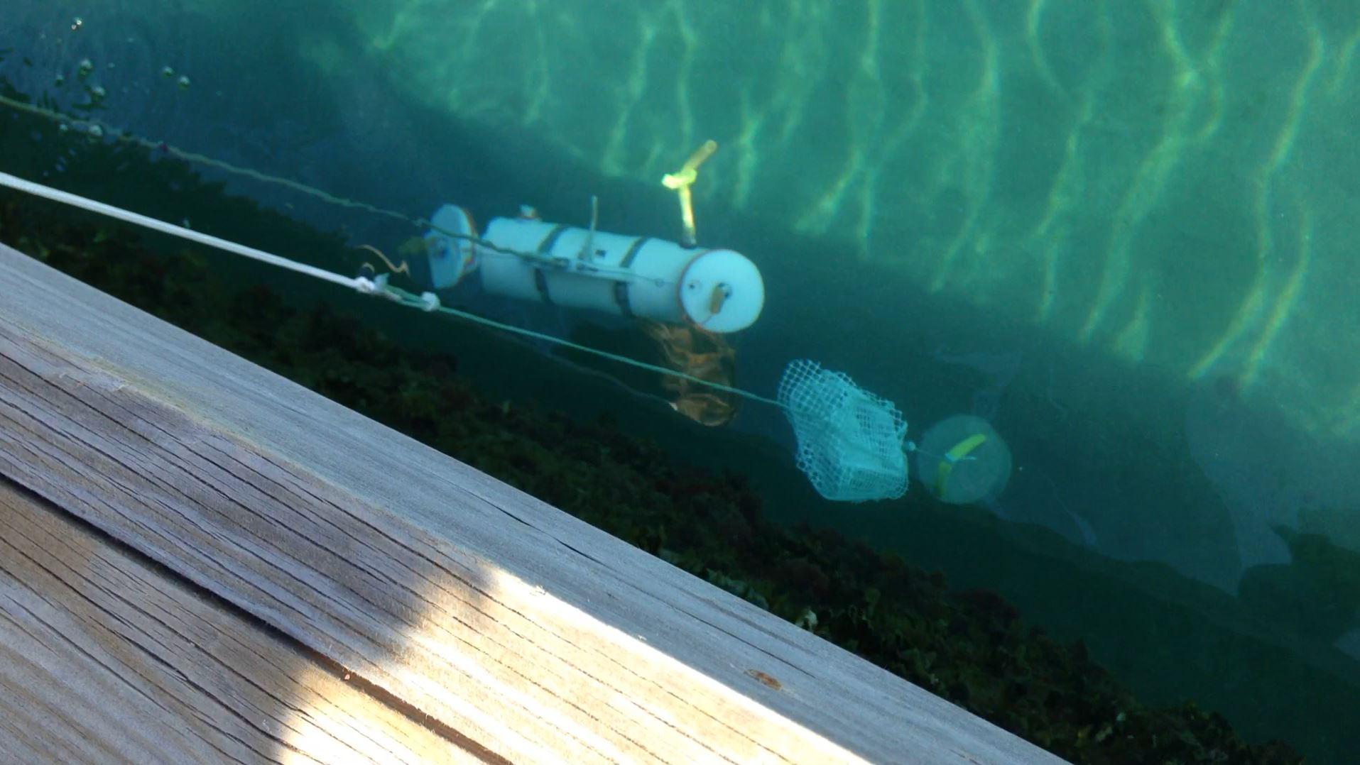 Water sampling at DGT depth